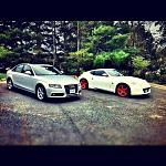 The whips